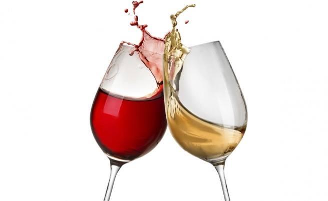 V edition of WINE FEST BURGAS